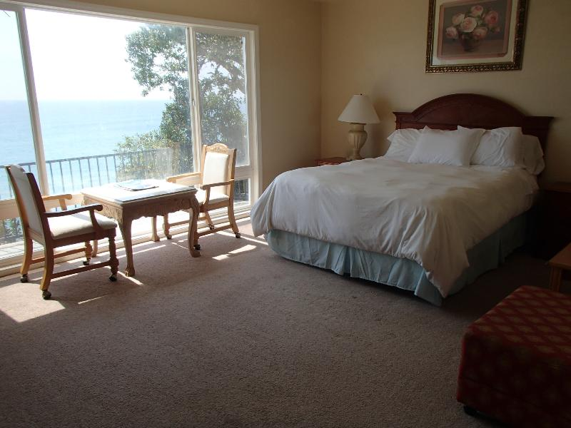 Beautiful Ocean Front Property (sleeps 8) - Image 1 - San Clemente - rentals