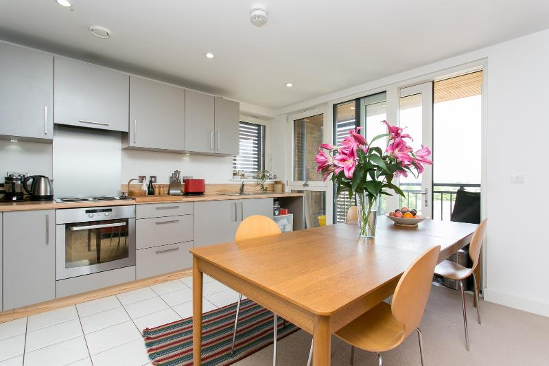 3 bed apartment with roof terrace, Dalston Square, Hackney - Image 1 - London - rentals