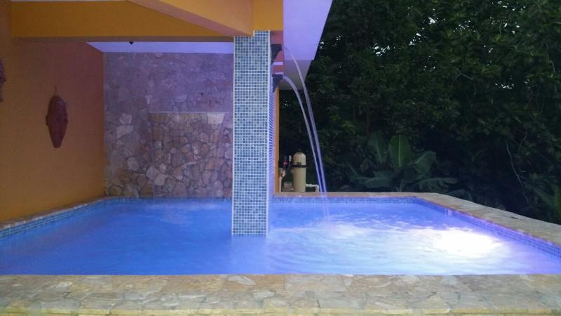 The Spa Pool - Luxury 7 Bedroom Oceanview Villa - Rincon - rentals
