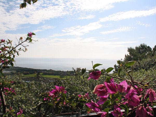 5 bedroom Villa in Orbetello, Tuscany, Italy : ref 2269202 - Image 1 - Ansedonia - rentals