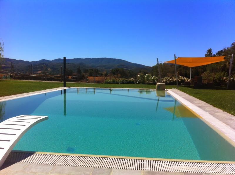 7 bedroom Villa in Borgo San Lorenzo, Mugello, Florentine Hills, Italy : ref - Image 1 - Piazzano - rentals