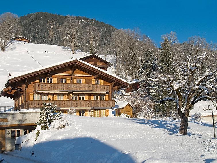 3 bedroom Apartment in Grindelwald, Bernese Oberland, Switzerland : ref 2297277 - Image 1 - Grindelwald - rentals