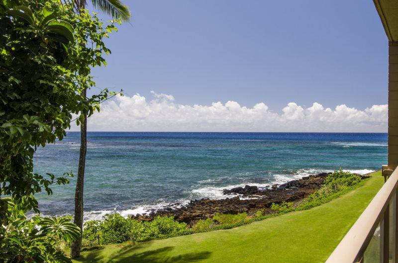 View from Kuhio Shores 201 - Free Mid-Size Car with Oceanfront Kuhio Shores with Lanai 50 Ft. from Snorkeling - Koloa - rentals