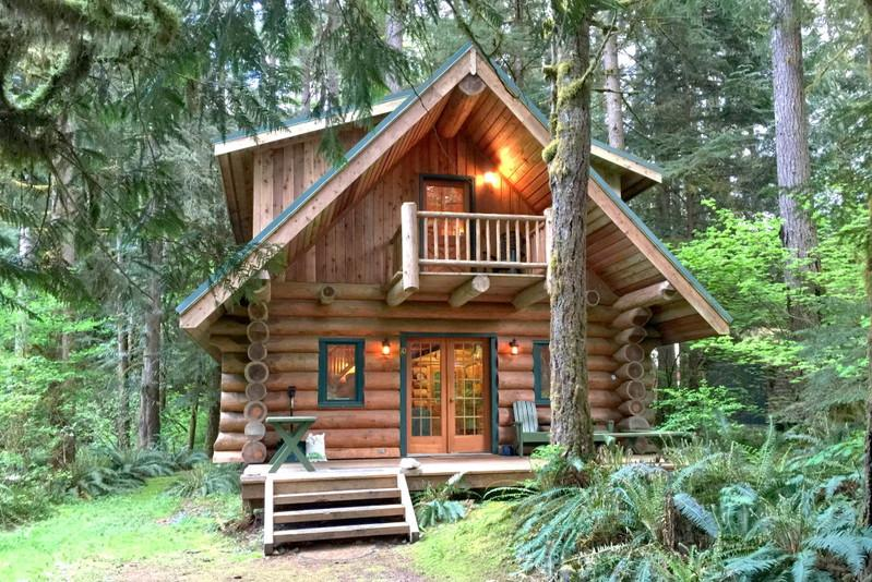 10SL - 10SL Log Cabin at Mt. Baker with WiFi - Glacier - rentals