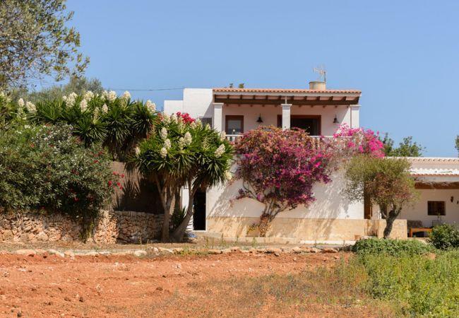 3 bedroom Villa in Santa Eulalia Del Rio, Ibiza : ref 2132891 - Image 1 - San Lorenzo - rentals