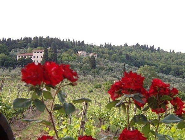 6 bedroom Villa in Rignano Sull'arno, Tuscany, Italy : ref 2266038 - Image 1 - Rignano sull'Arno - rentals