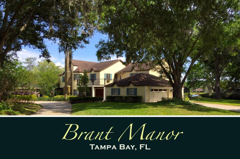Brant Manor: Florida's Majestic Countryside Minutes From Downtown Tampa - BRANT MANOR: 8 Bdrm, Lakefront Pool Home Near City - Tampa - rentals