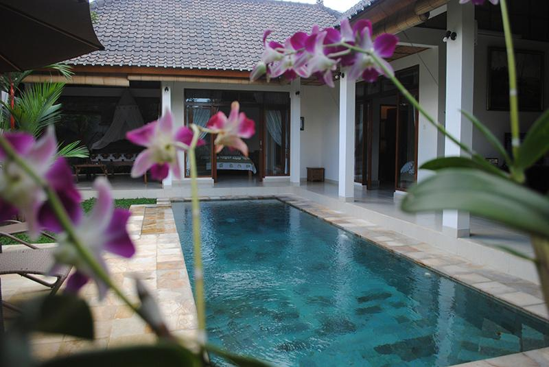 The pool is a central feature of this villa. - Villa Palm Merah - Stunning new villa, close2 Ubud - Ubud - rentals