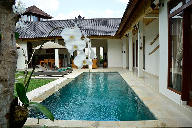 Villa Bindi - a magnificent 3 bedroom villa with large pool and great views. - Villa Bindi - 3 bedrooms - peace, privacy, views. - Ubud - rentals