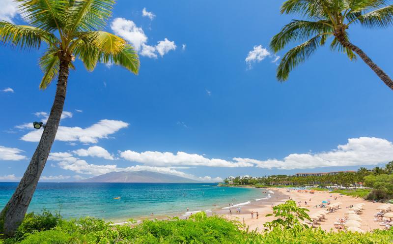 Maui - 5 minutes walk to the beach up to 6 people - Image 1 - Kihei - rentals