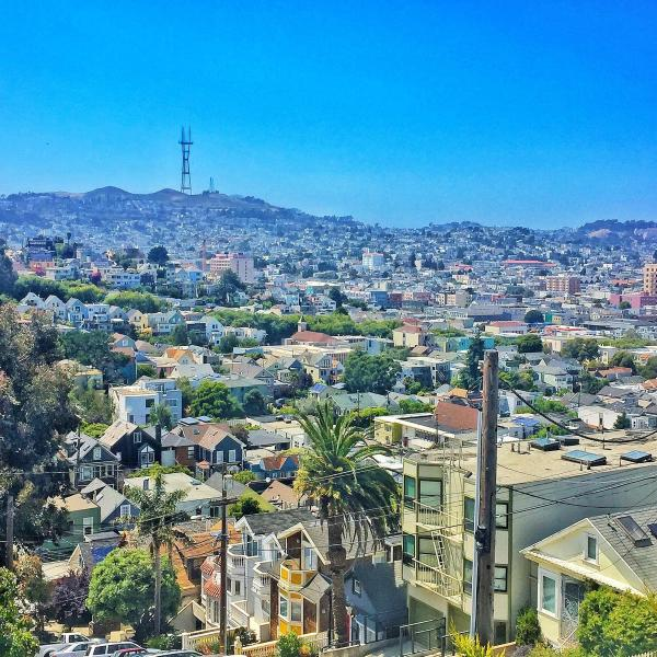 backyard view - 2BR Apt on beautiful hilltop, easy street parking - San Francisco - rentals