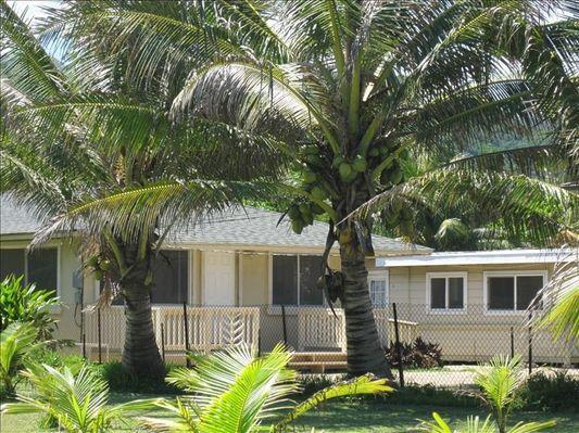 Coconut Beach Cottage - w/ BBQ, steps to beach - Image 1 - Hauula - rentals