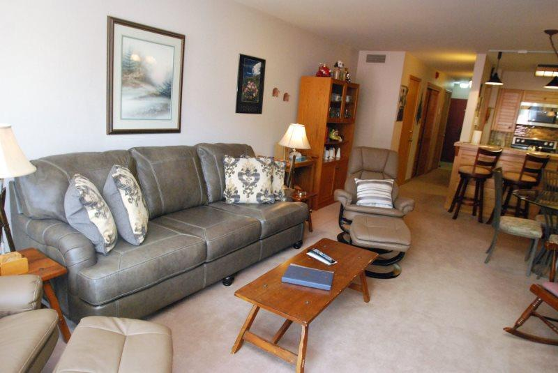 Ski Run Condominiums 203 - Walk to slopes, ski area views, spacious accommodations, pool! - Image 1 - Keystone - rentals