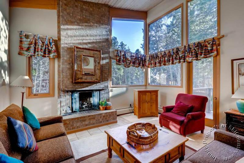 Christiana Townhomes 1 by Ski Country Resorts - Image 1 - Breckenridge - rentals