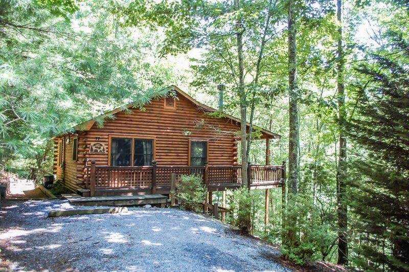 MOUNTAIN HEAVEN- 2BR/1BA- WOODED CABIN SLEEPS 4, PRIVATE ROMANTIC SETTING, KING BED IN THE MASTER, DESIGNER FURNISHINGS, WIFI, GAS LOG FIREPLACE, CHARCOAL GRILL, HOT TUB, ABUNDANCE OF WILDLIFE! STARTING AT $99 A NIGHT! - Image 1 - Blue Ridge - rentals
