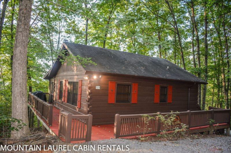 BULLWINKLE`S BUNGALOW- 2BR/1BA- COZY MOUNTAIN VIEW CABIN SLEEPS 5, SCREENED PORCH WITH PRIVATE HOT TUB, GAS GRILL, WIFI, FLAT SCREEN TV, AND PET FRIENDLY! STARTING AT $99 A NIGHT! - Image 1 - Blue Ridge - rentals