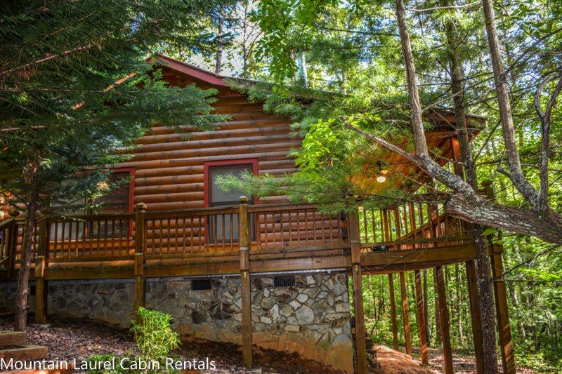 BEAR HUG CABIN- 2BR/1BA- CABIN SLEEPS 4, LOCATED WITHIN WALKING DISTANCE OF CHERRY LAKE AND THE BENTON MACKAY TRAIL! 14FT MAD RIVER CANOE, WIFI, WOOD BURNING FIREPLACE, CHARCOAL GRILL, PAVED ACCESS! STARTING AT $99 A NIGHT! - Image 1 - Blue Ridge - rentals