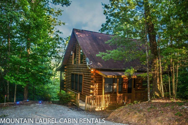 3 BEARS LODGE- 2BR/1.5BA, SLEEPS 4, BEAUTIFUL MOUNTAIN VIEW, GAS LOG FIREPLACE, WIFI, HOT TUB ON SCREENED PORCH, GAS GRILL, AND A FOOSBALL TABLE! STARTING AT $99 A NIGHT! - Image 1 - Blue Ridge - rentals