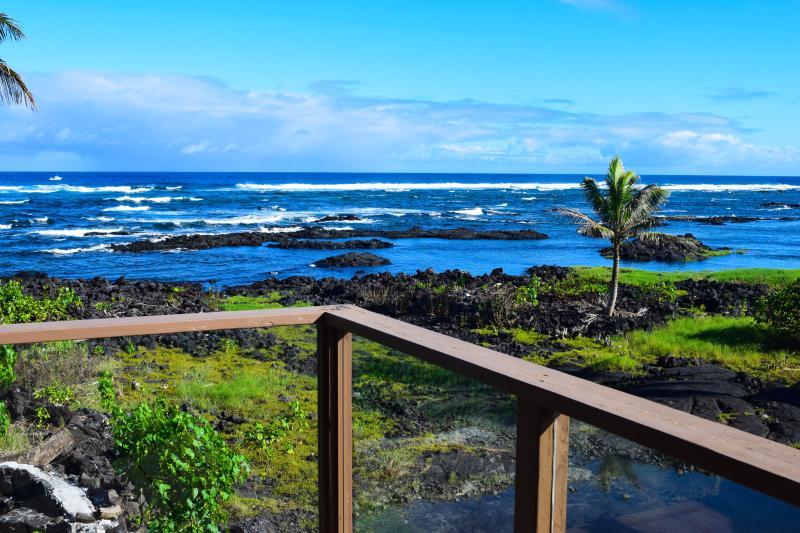 Hale o Wai Opae sits by a marine conservation area, with some of the state's best snorkeling - Hale O Wai Opae - Pahoa - rentals