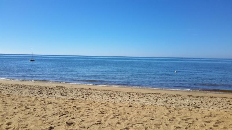 1/2 mile to beautiful South Sunken Meadow Beach! - PAREAS 78730 - Eastham - rentals