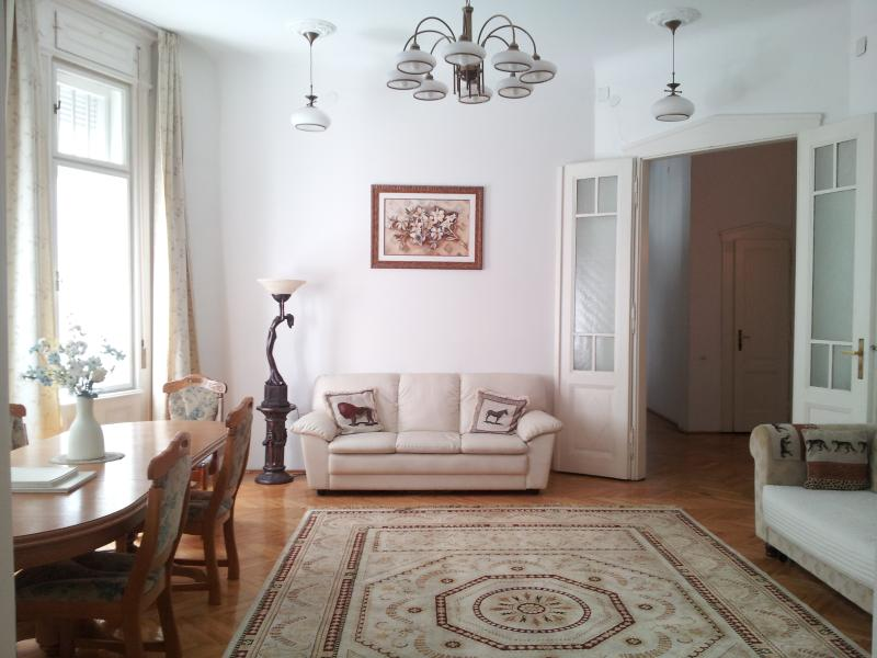 Living room - 'Elegance in the Heart' apartment, large 3 bedroom - Budapest - rentals