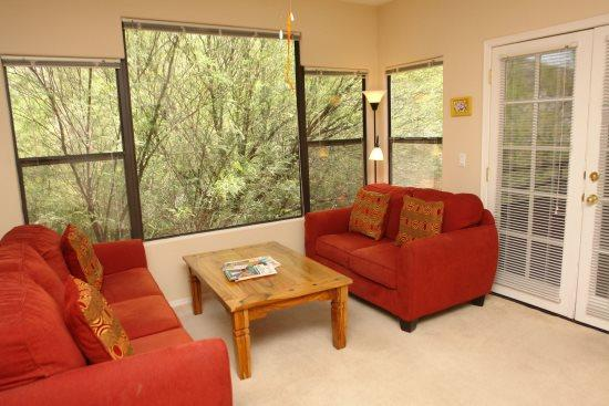Living room - Canyon View 15202 - Tucson - rentals