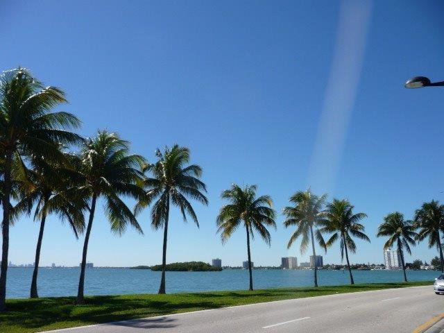 Miami Beach. - Charming home Miami - Miami - rentals