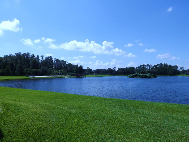 Our backyard - Lake view 7 Bed 4.5 Bath man gated 3 king bed - Kissimmee - rentals