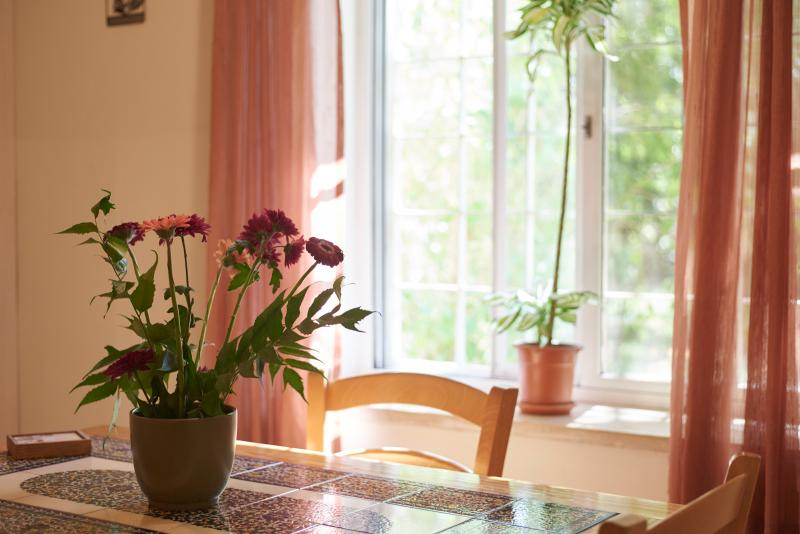 The dining table and the Garden View - Ariela's Place - Peaceful and Central One Br - Jerusalem - rentals