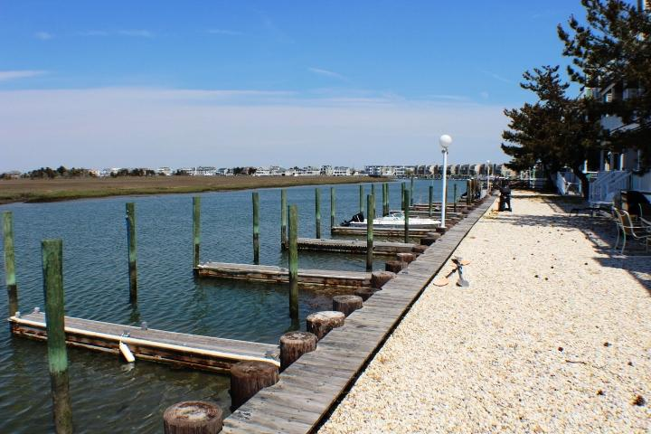Bayfront Dock Area - Royal Bay Condo 11 - Royal Bay Condo 11 - Spacious Bayfront! - Avalon - rentals