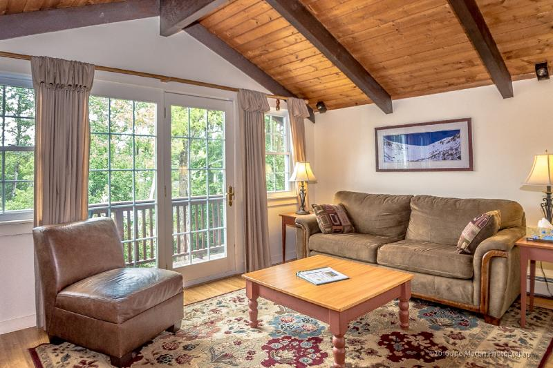 Living Area - Abbott Brook Vacation Chalets - Bartlett - rentals
