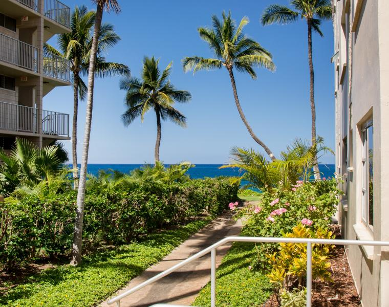 Our 2 Bedroom / 2 Bath ground floor condo has a partial ocean view from the Lanai and Master Bedroom - Beach-side Royal Mauian 2 Bedrm /2Bath / Air Cond. - Kihei - rentals