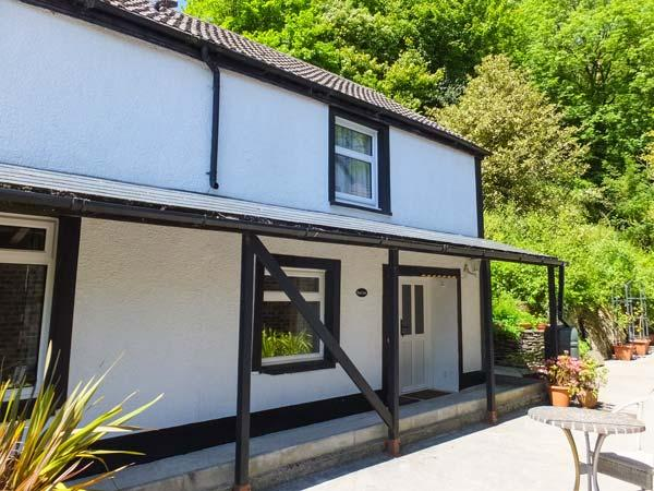RED KITE, pet-friendly cottage with WiFi, country setting, games room, Blaenwaun Ref 930697 - Image 1 - Blaenwaun - rentals