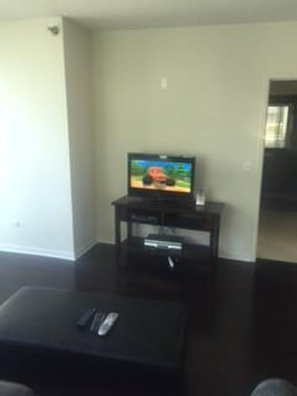 REMARKABLE 2 BEDROOM, 2 BATHROOM APARTMENT - Image 1 - Chicago - rentals