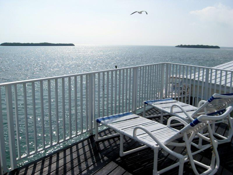 Panoramic Open Water Views - Image 1 - Cudjoe Key - rentals