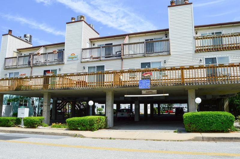 Cinnamon Teal 9 - Image 1 - Ocean City - rentals