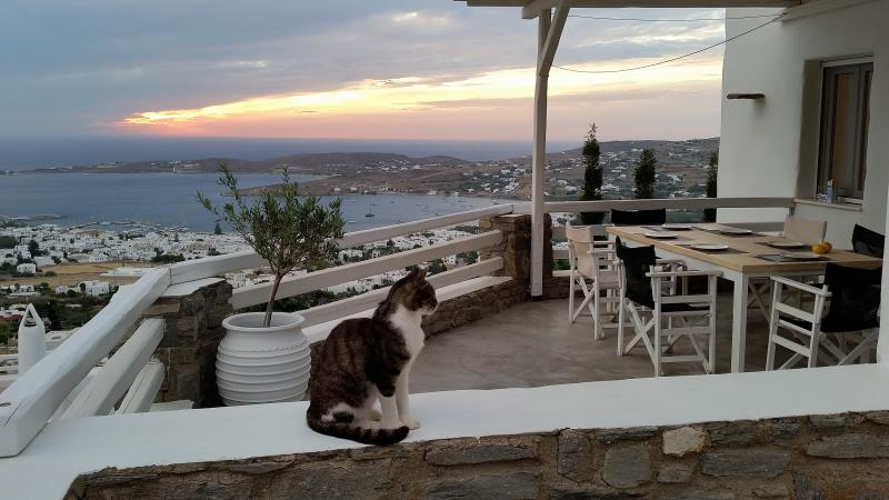 Exterior - Parikia Paros seaview private Villa - Paros - rentals