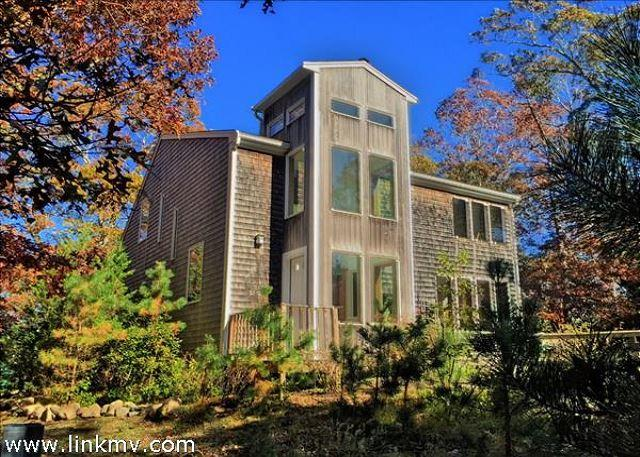 Bright Contemporary in East Chop - Image 1 - Oak Bluffs - rentals