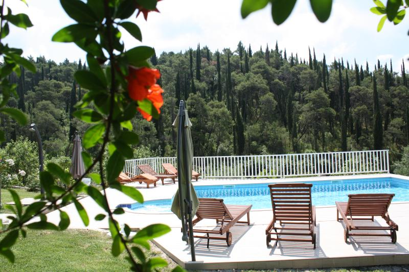 Villa Petra with swimming pool - Image 1 - Dubrovnik - rentals