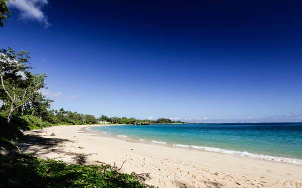 Beachside Getaway Estate - 2 units, steps to beach - Image 1 - Laie - rentals