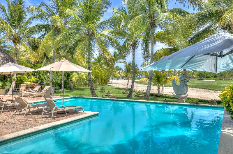 Unique Ocean view Villa with Full Staff - Image 1 - Punta Cana - rentals