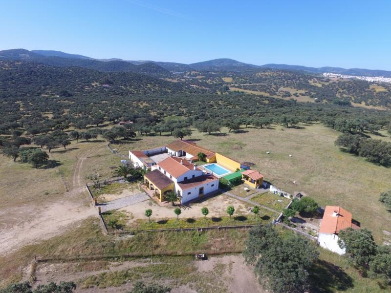 Lovely rural house in peaceful, idyllic environment - Image 1 - Monesterio - rentals