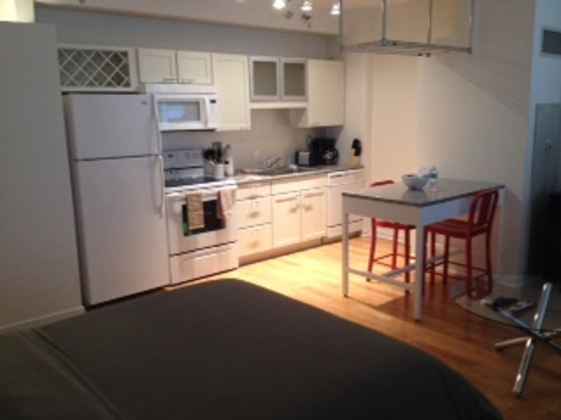 CHARMING, CLEAN AND COZY STUDIO APARTMENT - Image 1 - Chicago - rentals