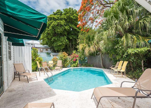Heated pool, exclusively for your enjoyment  - TROPICAL RETREAT- Upscale Home w/ Private Pool & BBQ Grill 1/2 Block To Duval - Key West - rentals