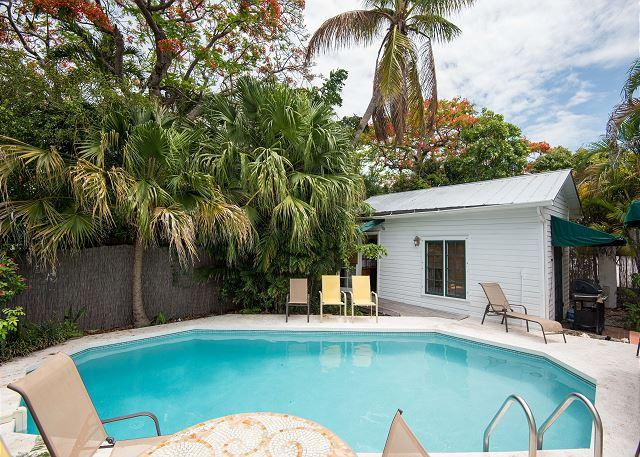 Lounge around your private heated pool at Tropical Retreat  - TROPICAL RETREAT- Upscale Home w/ Private Pool & BBQ Grill 1/2 Block To Duval - Key West - rentals