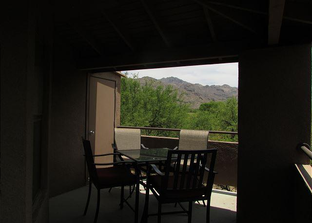 Second Floor Spacious 1 bedrm with den with unobstucted Mountain Views - Image 1 - Tucson - rentals