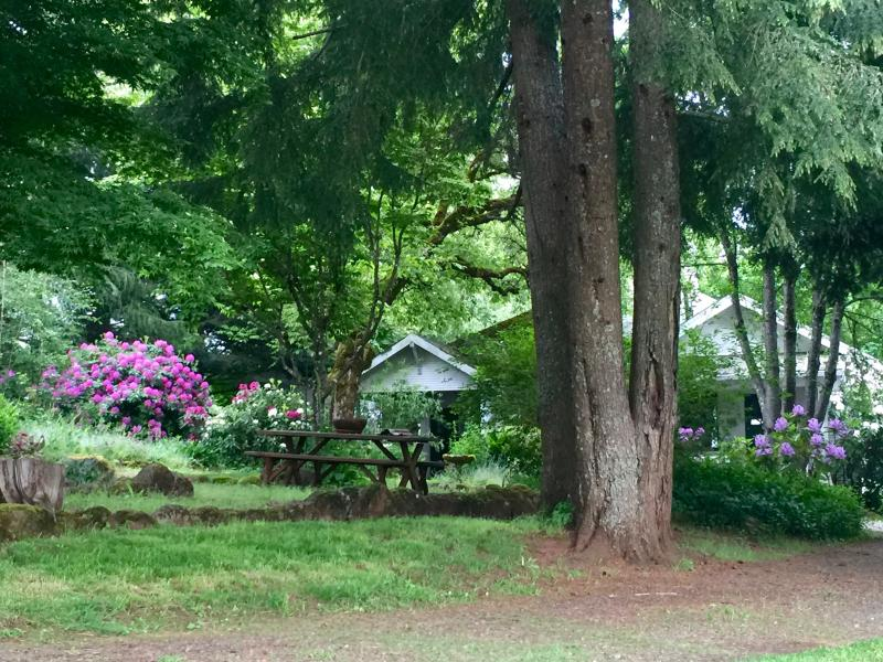 Luxury Home on Organic Farm and Equestrian Estate - Image 1 - Silverton - rentals