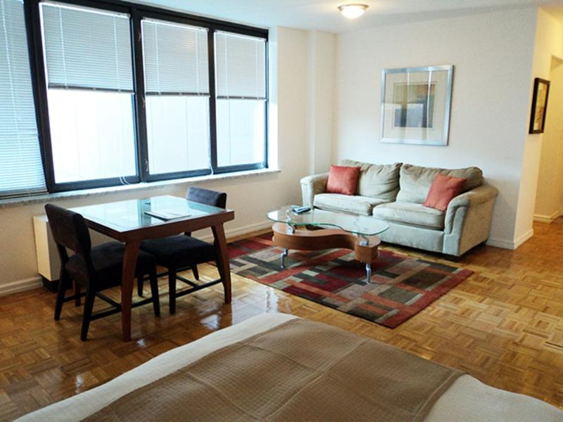 Gorgeous Studio Apartment with DIshwasher - Midtown West - Image 1 - New York City - rentals