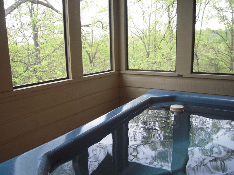 This large HOT TUB is in a screened porch for NO more bugs! - Bear Me Away in Shagbark - Pigeon Forge - rentals