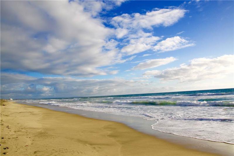 1202 S Pacific #1 - Image 1 - Oceanside - rentals